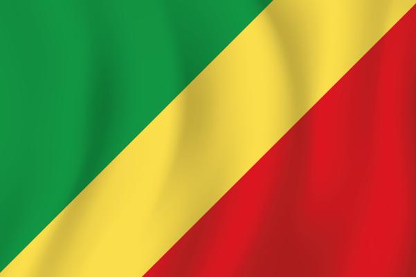 Économie Numérique Au Congo